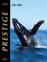 Prestige life style 2017/1
